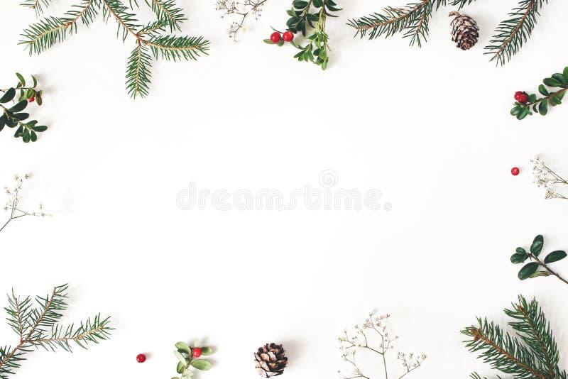 Floral πλαίσιο Χριστουγέννων, διακοσμητικά σύνορα Χειμερινή σύνθεση των κόκκινων κλάδων των βακκίνιων, λουλούδια αναπνοής του μωρ στοκ εικόνα