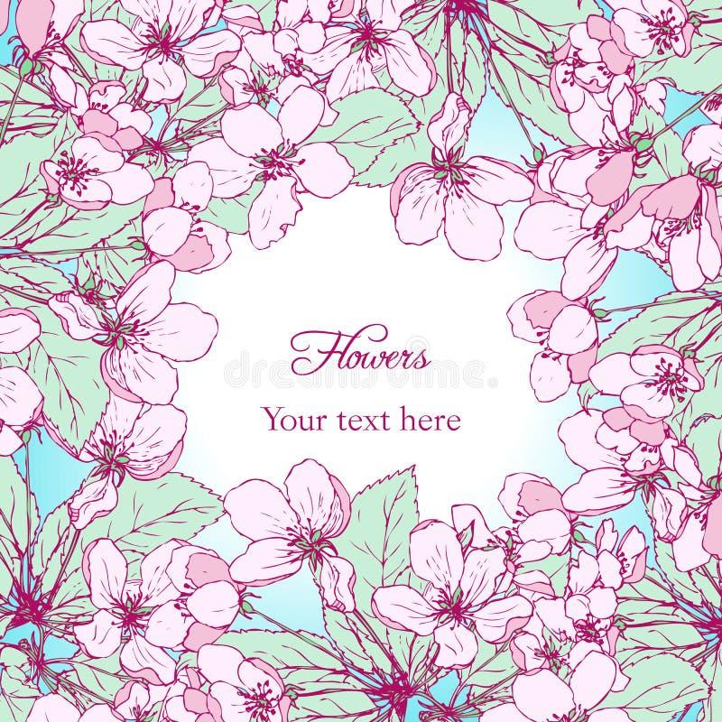 Floral πλαίσιο με τα άνθη μήλων σχεδίων γραμμών απεικόνιση αποθεμάτων