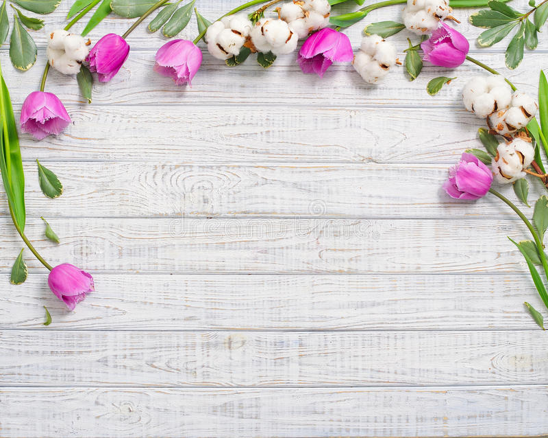 Floral πλαίσιο με τις πορφυρές τουλίπες στοκ φωτογραφία με δικαίωμα ελεύθερης χρήσης
