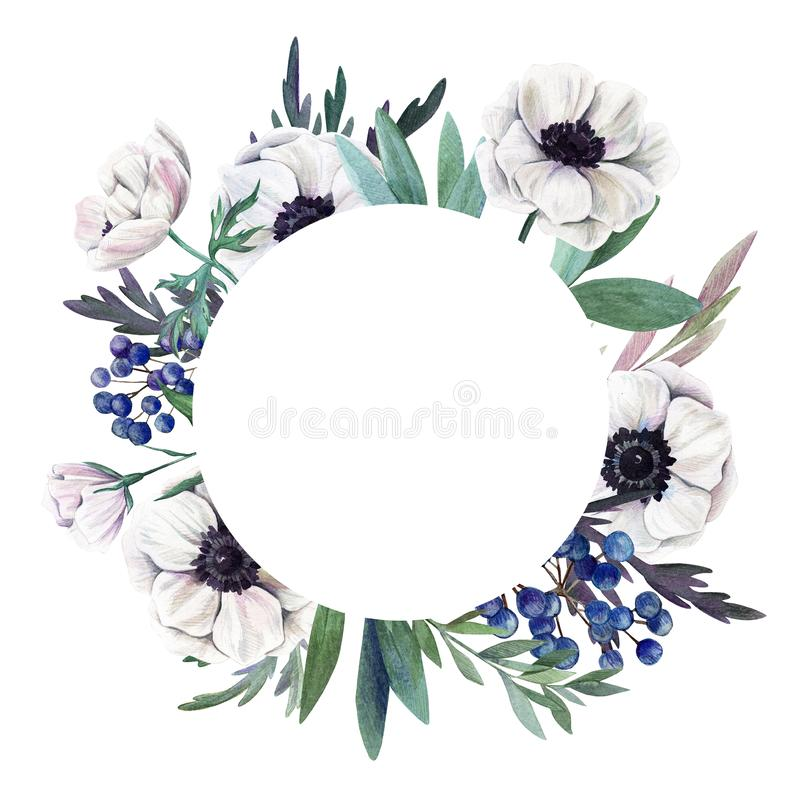 floral σειρά πλαισίων πλαισίων Watercolor χέρι που σύρεται βοτανικό διανυσματική απεικόνιση