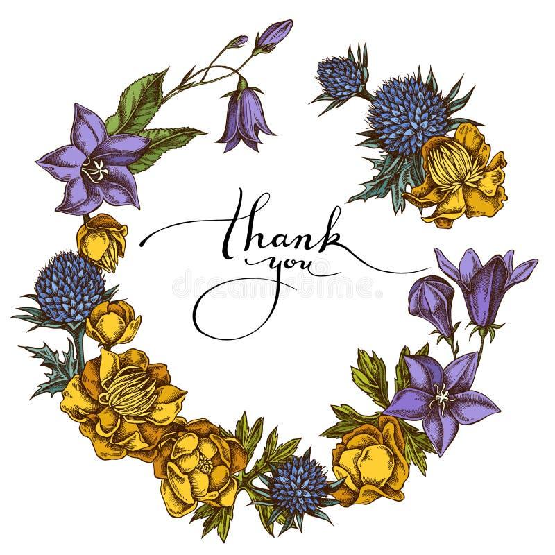 Floral στεφάνι χρωματισμένος bellflower, globethistle, globeflower ελεύθερη απεικόνιση δικαιώματος