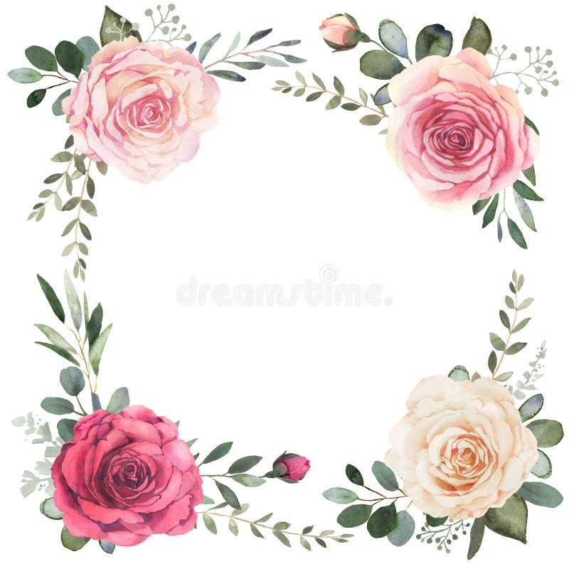 Floral στεφάνι Watercolor με τα τριαντάφυλλα και τον ευκάλυπτο ελεύθερη απεικόνιση δικαιώματος