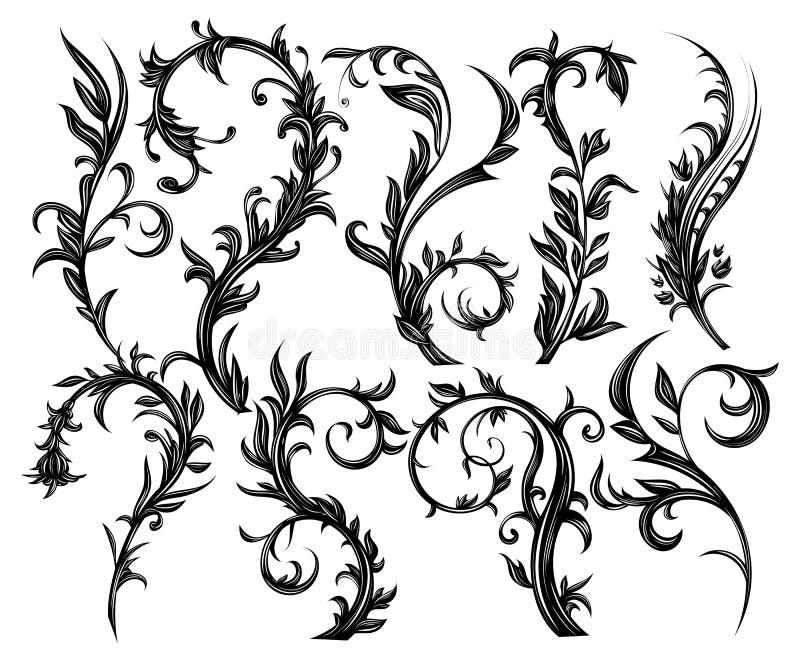 Floral στοιχεία σχεδίου απεικόνιση αποθεμάτων
