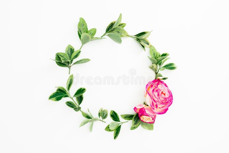 Floral στρογγυλό πλαίσιο με τα ρόδινα λουλούδια και τα φύλλα τριαντάφυλλων στο άσπρο υπόβαθρο Επίπεδος βάλτε, τοπ άποψη απεικόνιση αποθεμάτων