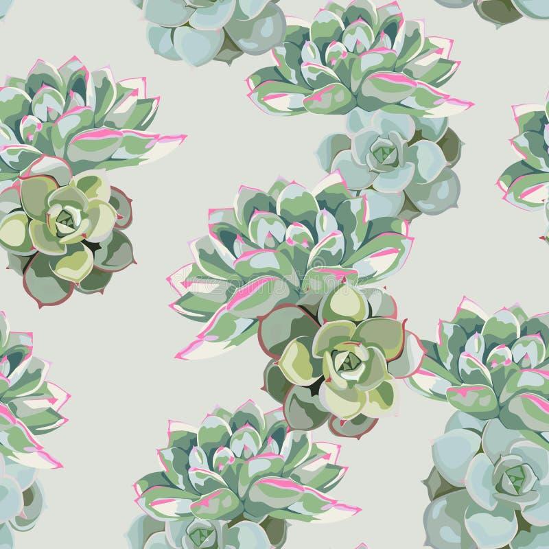 Floral σχέδιο, λεπτή ταπετσαρία λουλουδιών, πράσινος ρόδινος succulent Λεπτό θηλυκό σχέδιο ελεύθερη απεικόνιση δικαιώματος