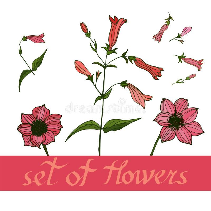 Floral σχέδιο με τα στοιχεία flowerswith του σχεδίου επίσης corel σύρετε το διάνυσμα απεικόνισης διανυσματική απεικόνιση