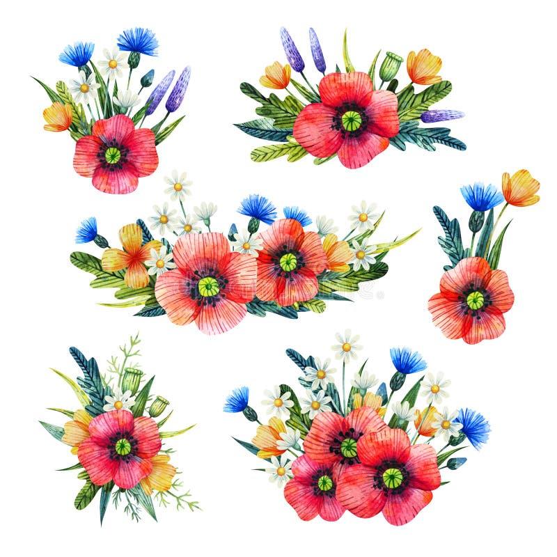 Floral σύνθεση Watercolor Συρμένη χέρι απεικόνιση με τα θερινά λουλούδια Ανθοδέσμες με τα wildflowers Παπαρούνες απεικόνιση αποθεμάτων