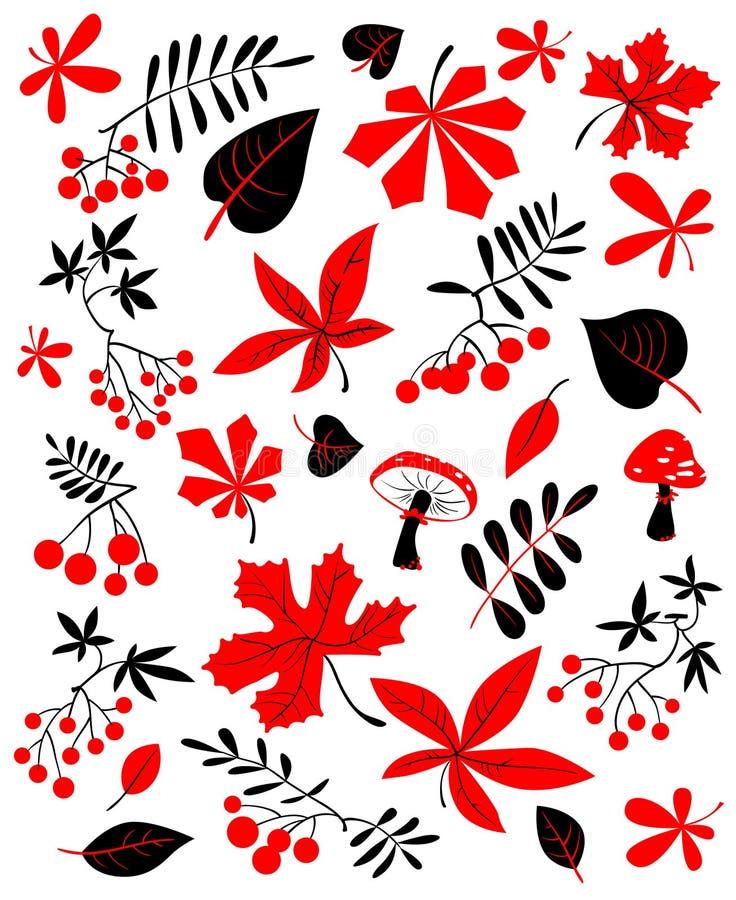 Floral σύνολο φθινοπώρου Διανυσματική απεικόνιση εποχής πτώσης με το φωτεινό λ διανυσματική απεικόνιση