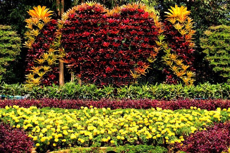 Floral τέχνη στοκ φωτογραφία με δικαίωμα ελεύθερης χρήσης
