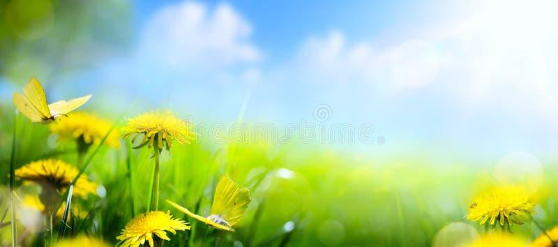Floral υπόβαθρο άνοιξη  φρέσκο λουλούδι στο πράσινο υπόβαθρο χλόης στοκ φωτογραφία