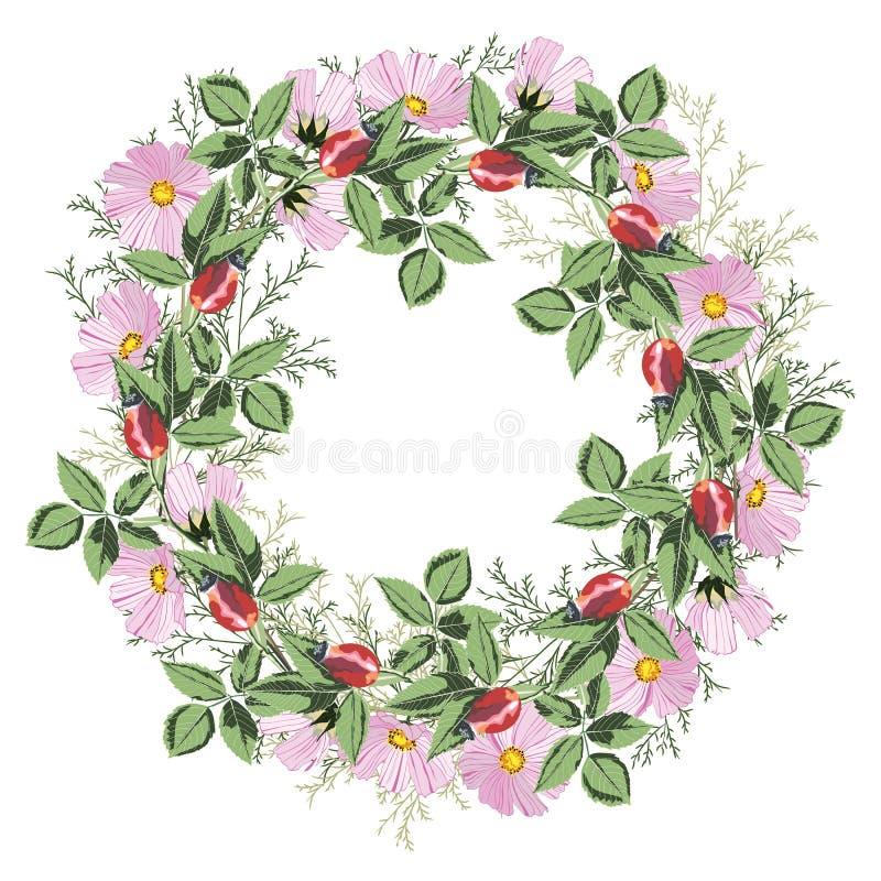 Floral υπόβαθρο κύκλων Στρογγυλή απεικόνιση λουλουδιών τριαντάφυλλων φθινοπώρου άγρια απεικόνιση αποθεμάτων