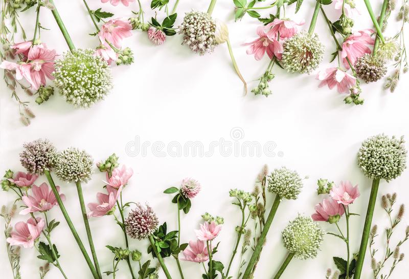 Floral υπόβαθρο με ένα διάστημα για ένα κείμενο στοκ φωτογραφία