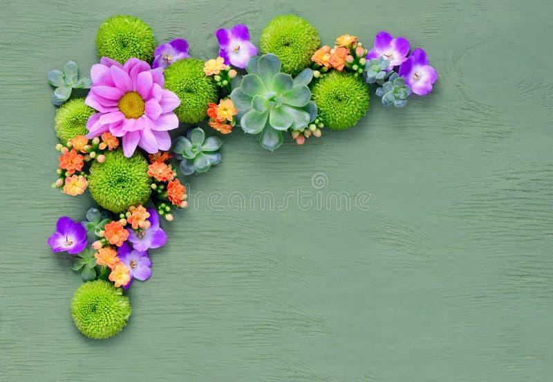 Floral υπόβαθρο με ένα διάστημα για ένα κείμενο στοκ εικόνες με δικαίωμα ελεύθερης χρήσης