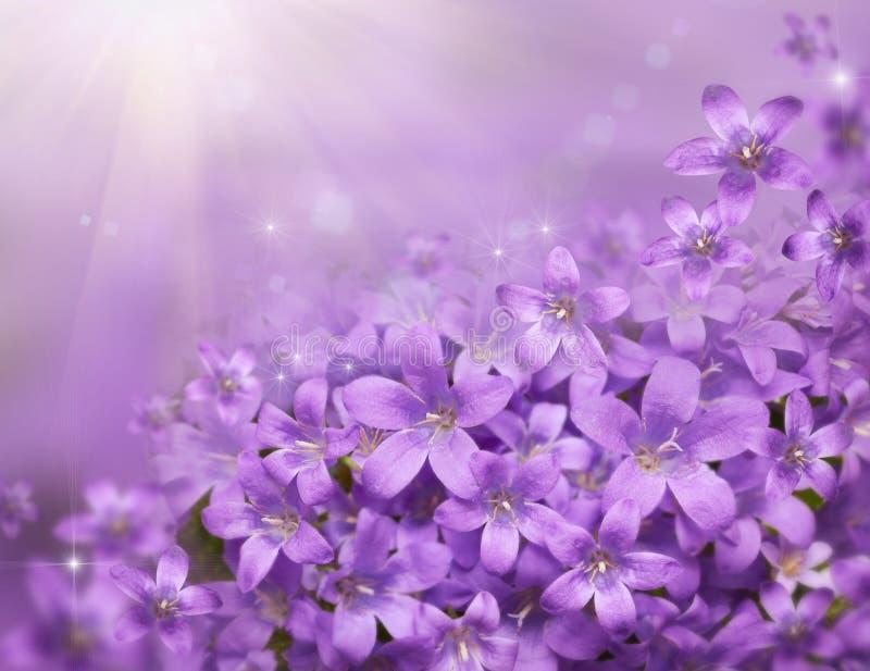 Floral υπόβαθρο με τα όμορφα πορφυρά snowdrops απεικόνιση αποθεμάτων