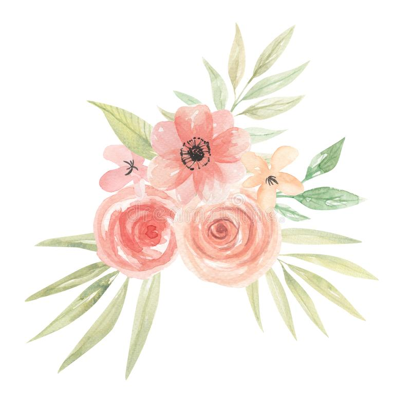 Floral χρωματισμένα φύλλα ρύθμισης κοραλλιών ανθοδεσμών ροδάκινων λουλουδιών Watercolor απεικόνιση αποθεμάτων