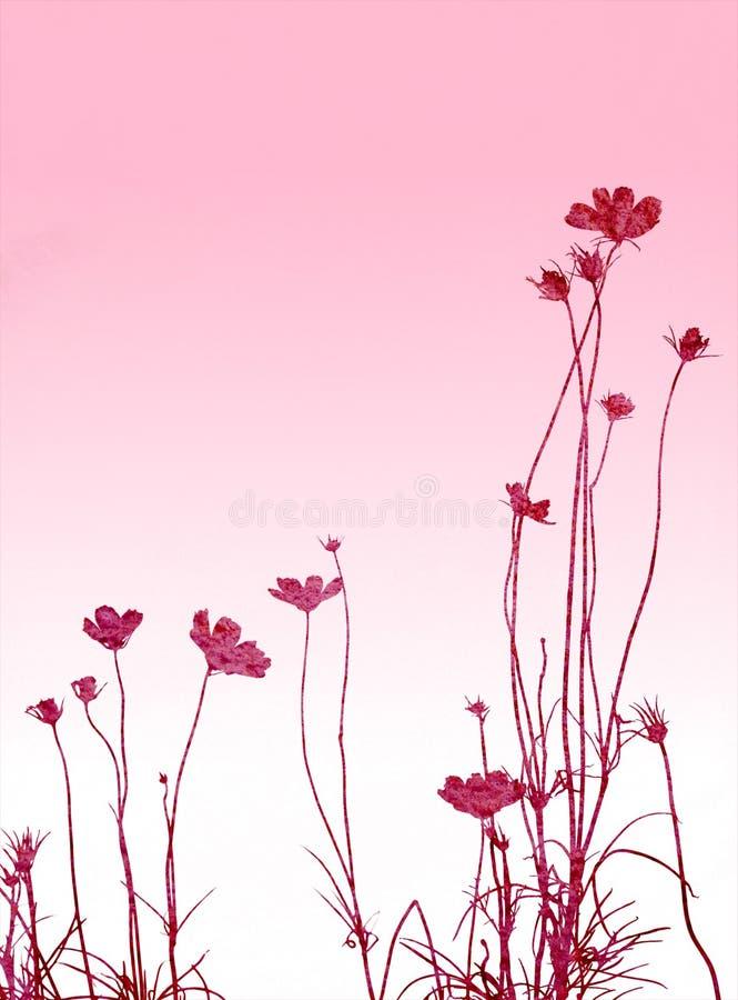 Floral ilustração royalty free