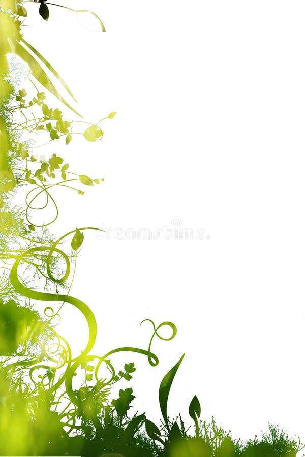 Floral libre illustration