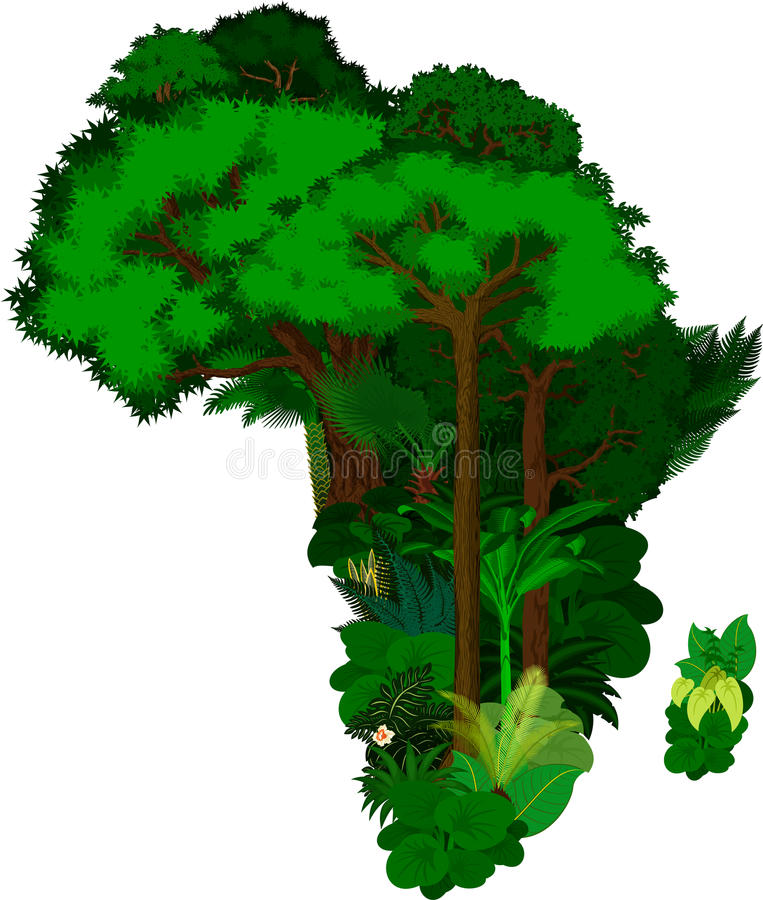 Floral Africa - vector illustration. Isolated stock illustration