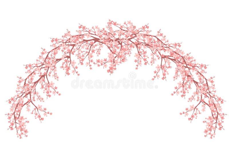 Floral arch made sakura branches vector design. Floral arch made of blooming sakura branches - spring season vector design vector illustration
