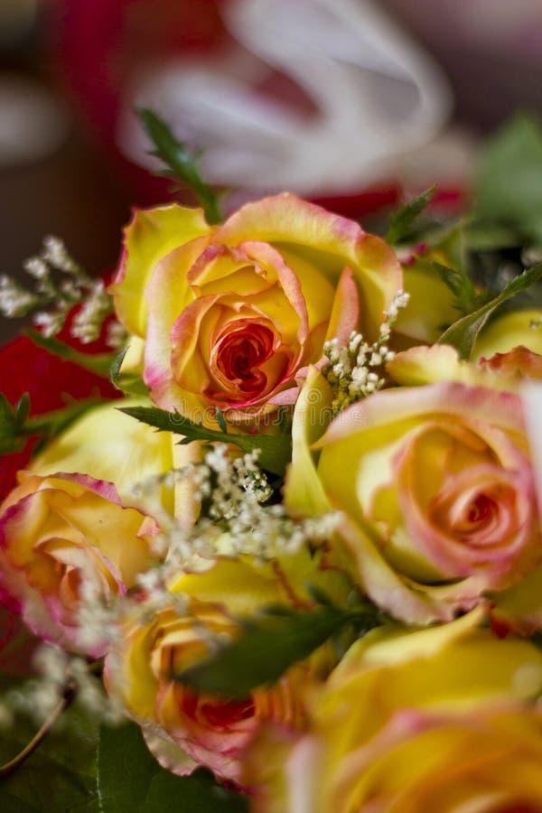 Download Floral arrangement stock image. Image of garden, arrangement - 27155455