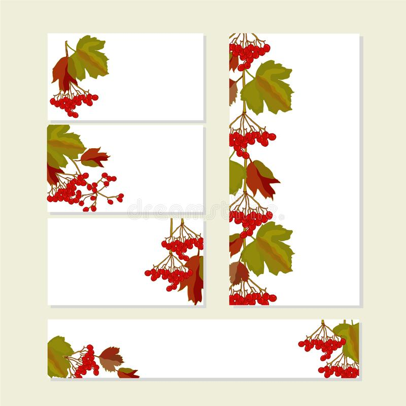 Floral autumn templates with cute bunches of red viburnum fruits on white. For ro royalty free illustration