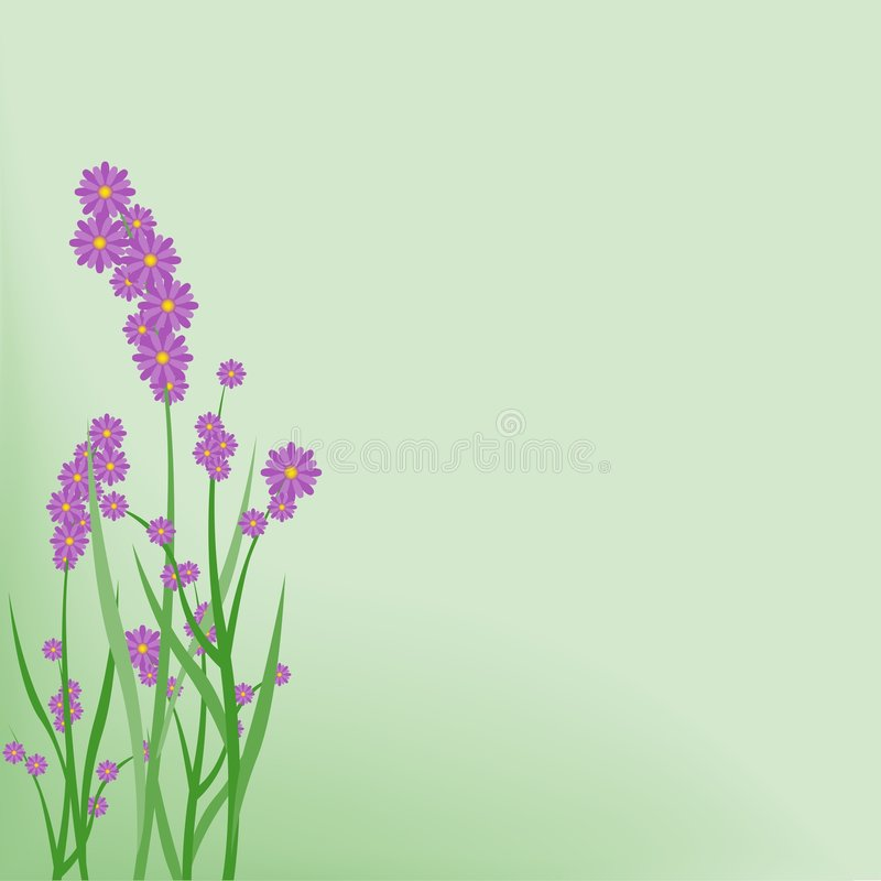 Free Floral Background 02 Stock Photography - 1997502