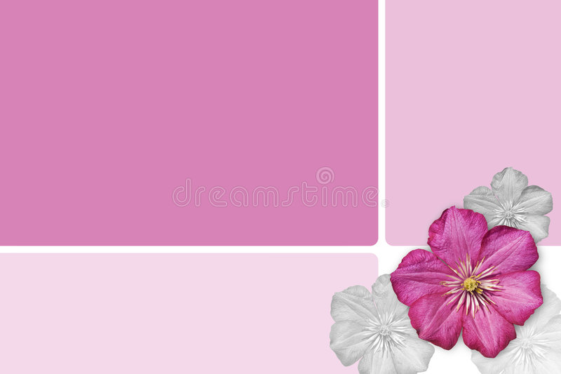 Floral Background. In pink color royalty free stock images