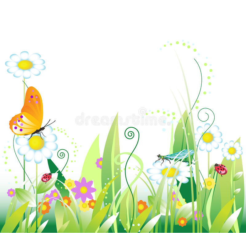 Floral background. With insects. Summer. Vector illustration