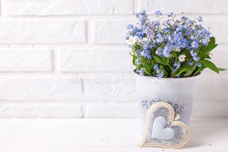 Floral background - blue forget-me-nots or myosotis flowers in stock image