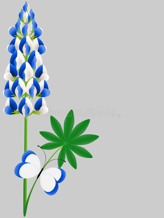 Floral background with blue lupine with leaves and a butterfly. royalty free illustration