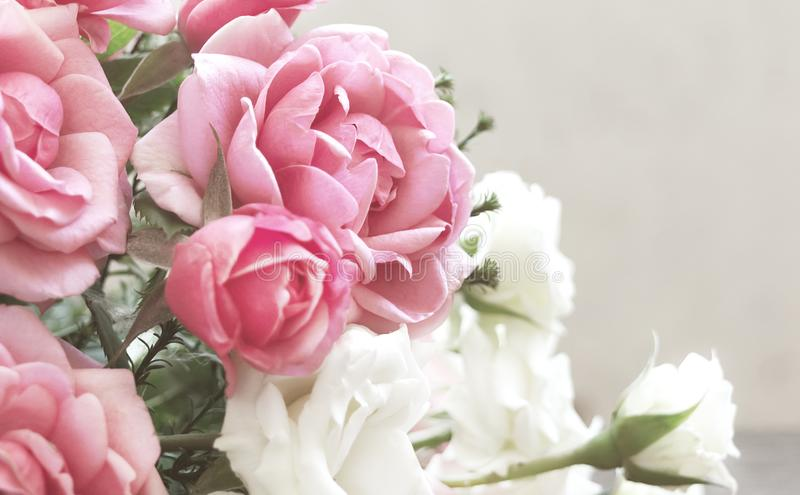 Floral background with bouquet of roses. Rectangular photo with flowers. royalty free stock photos