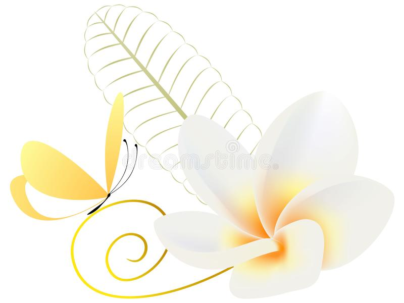 Floral background with flower frangipani Plumeria and butterfly. stock illustration