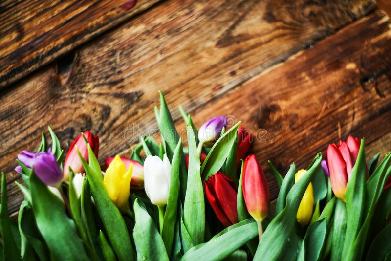 Floral background, greeting card, harvesting, mocap for greetings for mother`s day, international women`s day: bouquet stock images