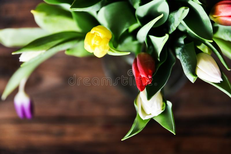 Floral background, greeting card, harvesting, mocap for greetings for mother's day, international women's day: bouquet of colorf royalty free stock photos