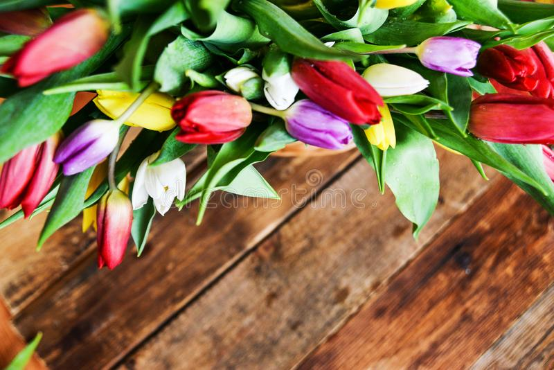 Floral background, greeting card, harvesting, mocap for greetings for mother`s day, international women`s day: bouquet royalty free stock photography