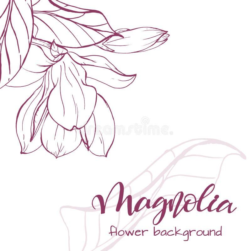Sketch linear magnolia blossom stock vector illustration of download sketch linear magnolia blossom stock vector illustration of floral garden 109209016 maxwellsz