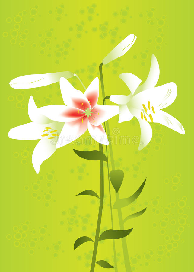 Floral Background With Lilies Stock Image