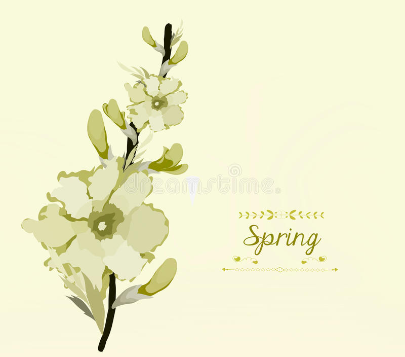 Floral background, spring theme, greeting card stock illustration