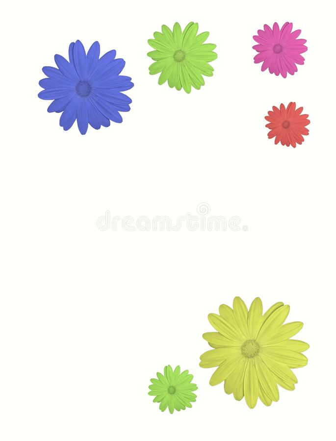 Floral background with vibrant colors flowers isolated in color background royalty free stock images