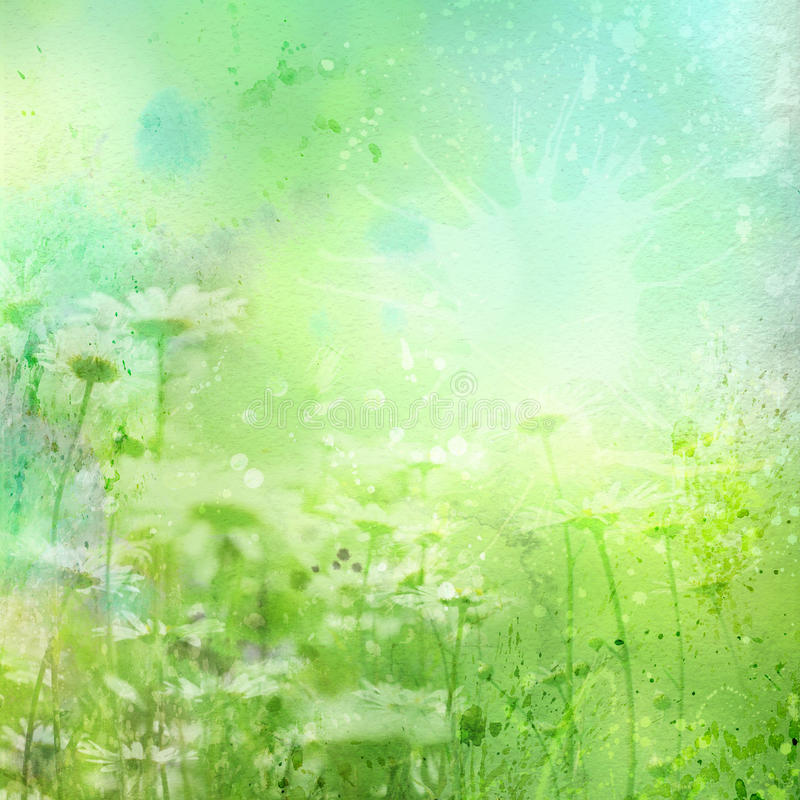 Free Floral Background With Watercolor Camomile Stock Photos - 29316593