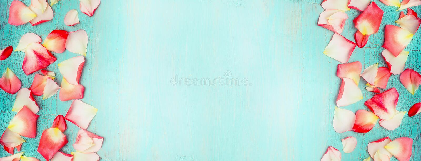 Floral banner with flowers petal on turquoise blue shabby chic background, top view stock photos