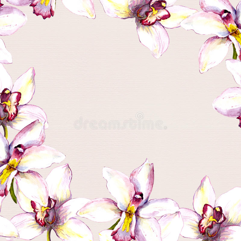 Floral beige background with white orchid flower. Hand painted aquarell drawing. On paper texture royalty free illustration