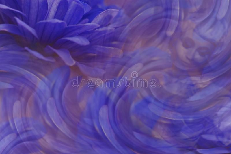 Floral blue-violet beautiful background. Flower composition. The petals of flowers around the girl`s face. Greeting card. Nature royalty free stock images