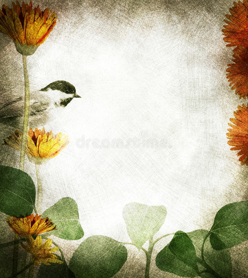 Floral border. A textured floral and bird border with text area