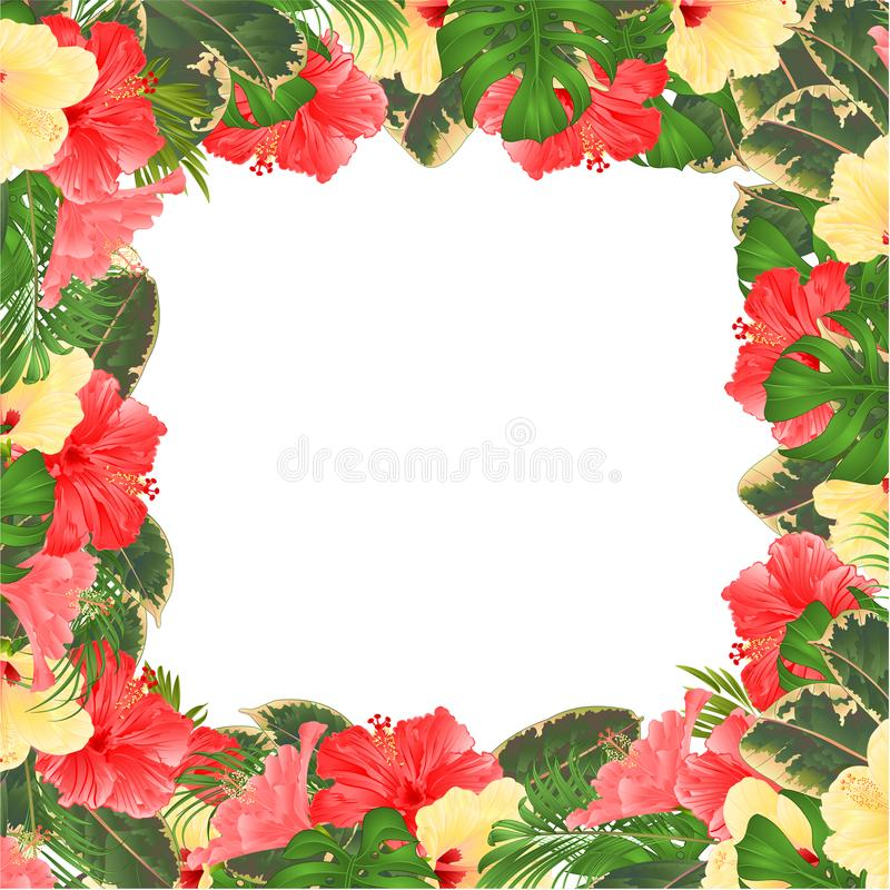 Floral border with blooming various hibiscus and tropical leaves vector Illustration flower background with place for your text vector illustration