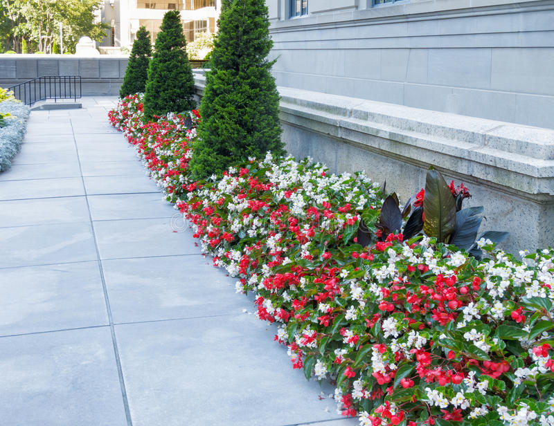 Floral border. Herbaceous border with paved walkway and stone wall stock photography