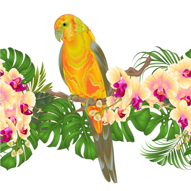 Floral border seamless background and Sun Conure Parrot standing on a yellow orchid Phalaenopsis and palm, phiodendronon on a whi royalty free illustration