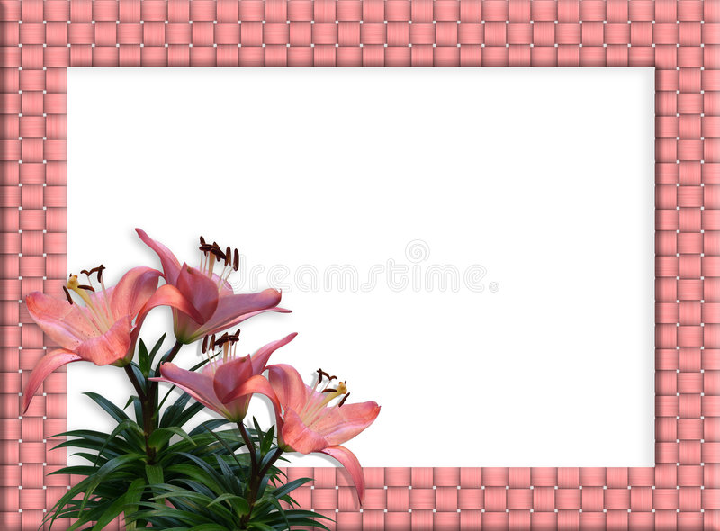 Floral Border woven frame Pink Lilies stock illustration