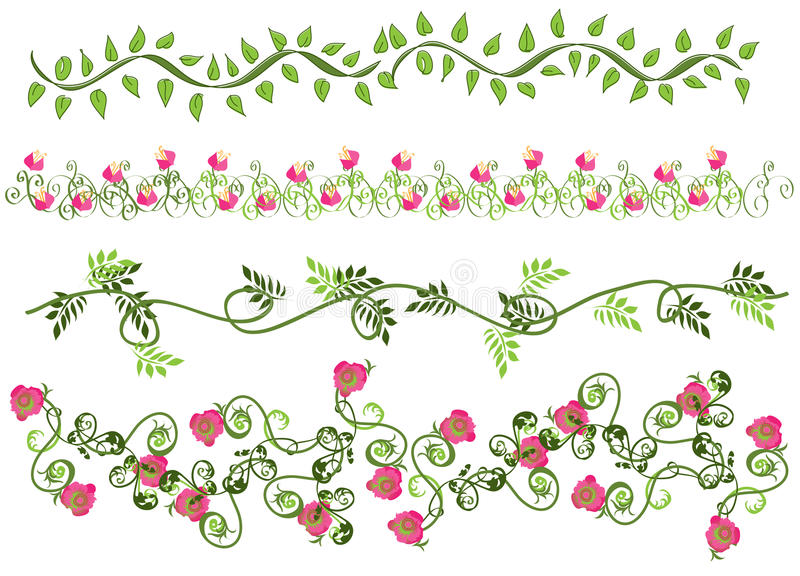 Download Floral borders stock illustration. Image of curl, floral - 10783205