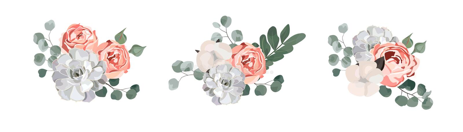 Floral bouquet design: garden pink rose cotton, succulent, eucalyptus branch greenery leaves stock illustration